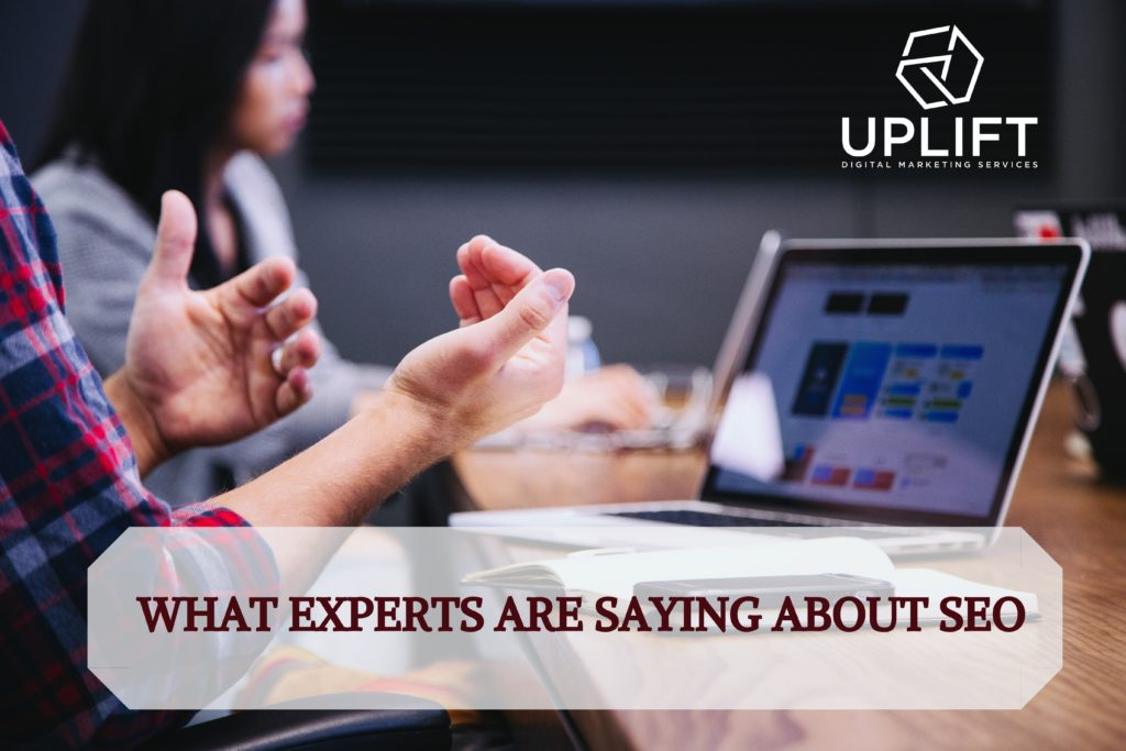What experts are saying about SEO